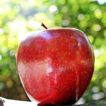Обычные яблоки вредят зубам