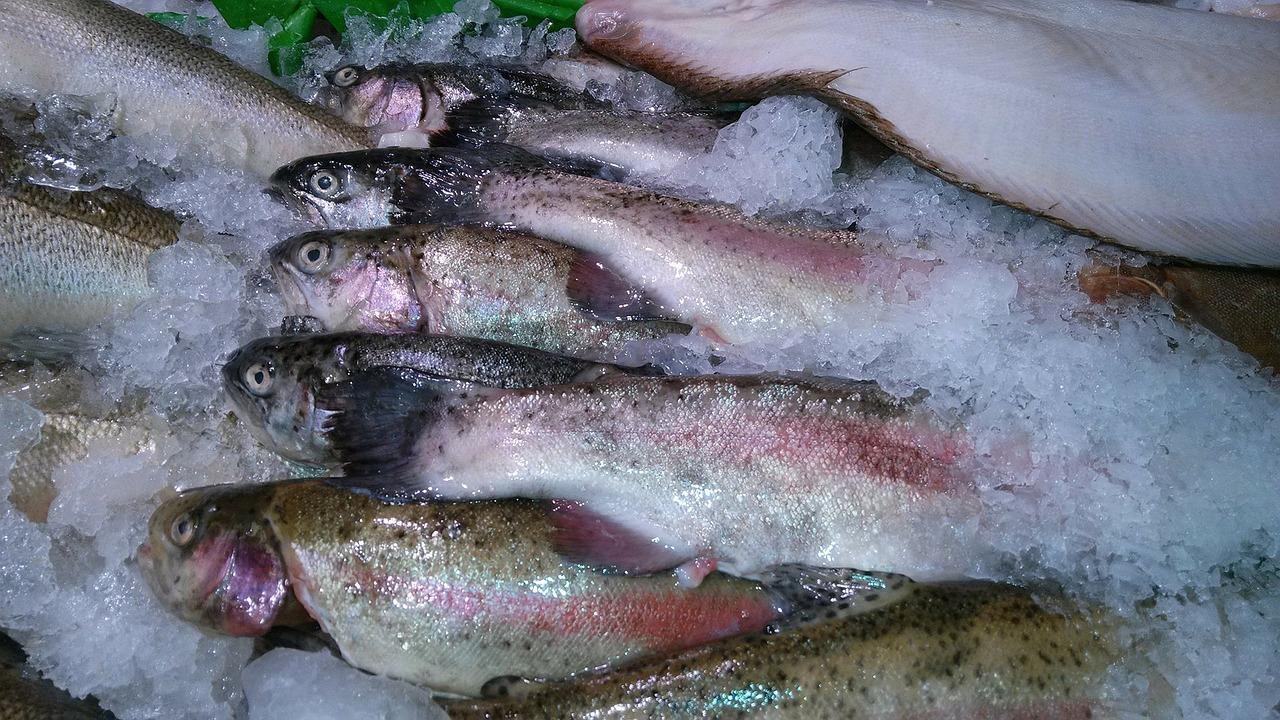 Свежая рыба может быть опаснее замороженной
