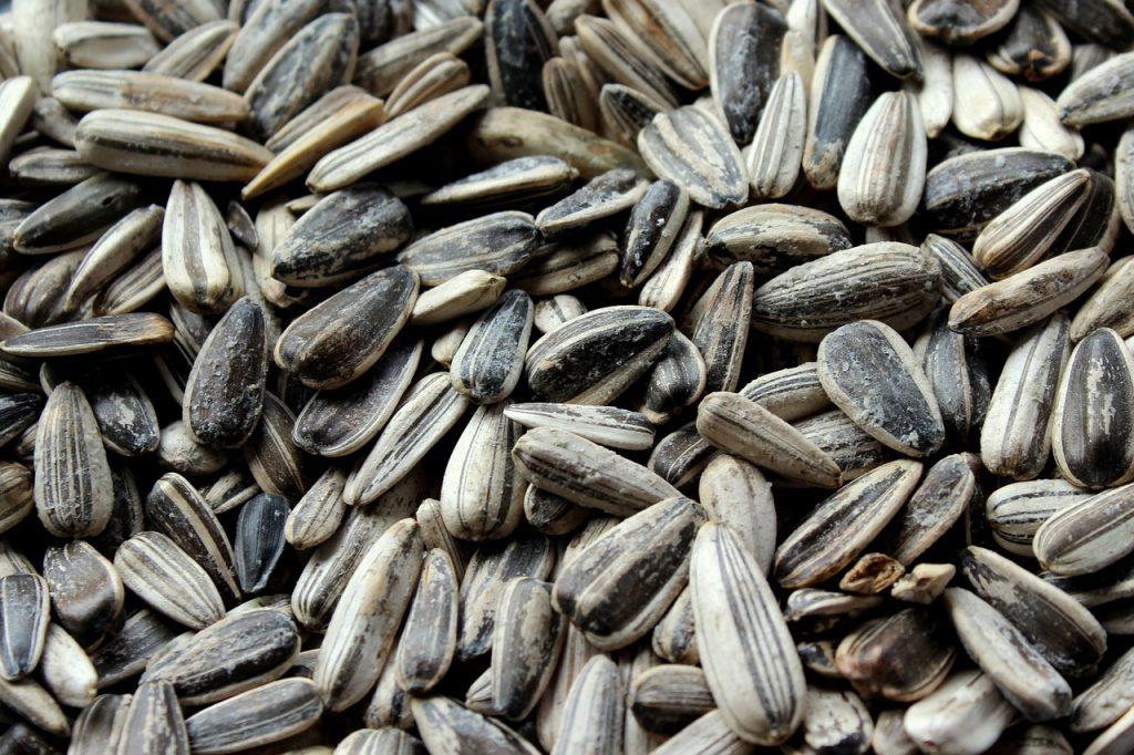 Вред употребления семечек