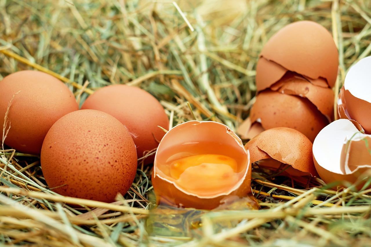 Есть яйца или нет, и с чем можно смешивать яйца, а с чем нельзя