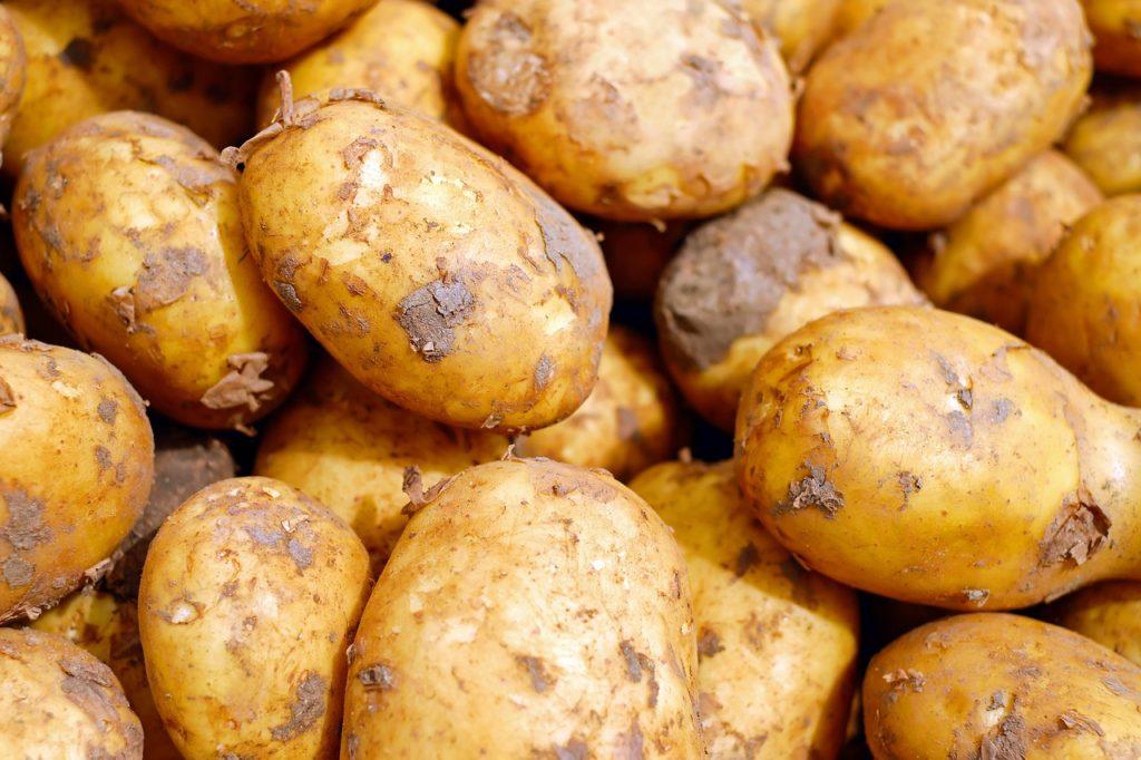 Вред картофеля для здоровья