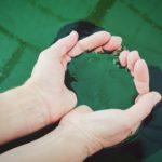 9 побочных действий спирулины